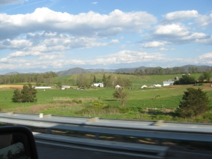 One of many amazing views on the drive