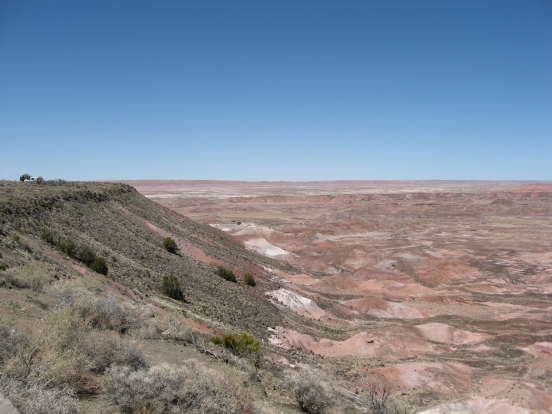 Petrified Forest Painted Desert (1)