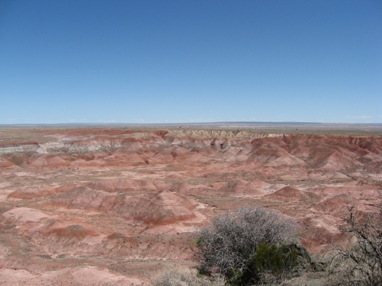Petrified Forest Painted Desert (2)