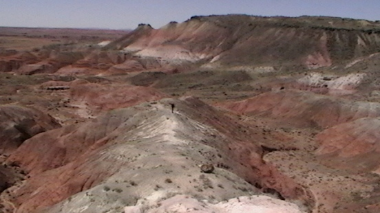 Petrified Forest Painted Desert (36)