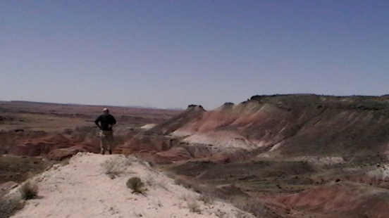 Petrified Forest Painted Desert (42)