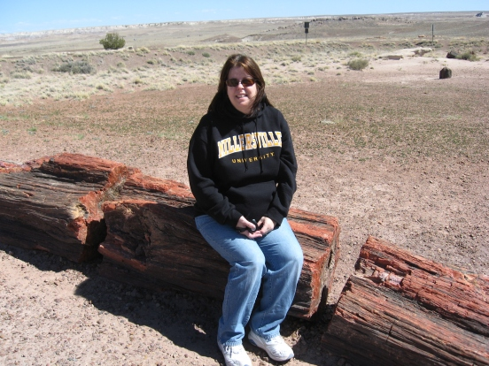 Petrified Forest Painted Desert (9)