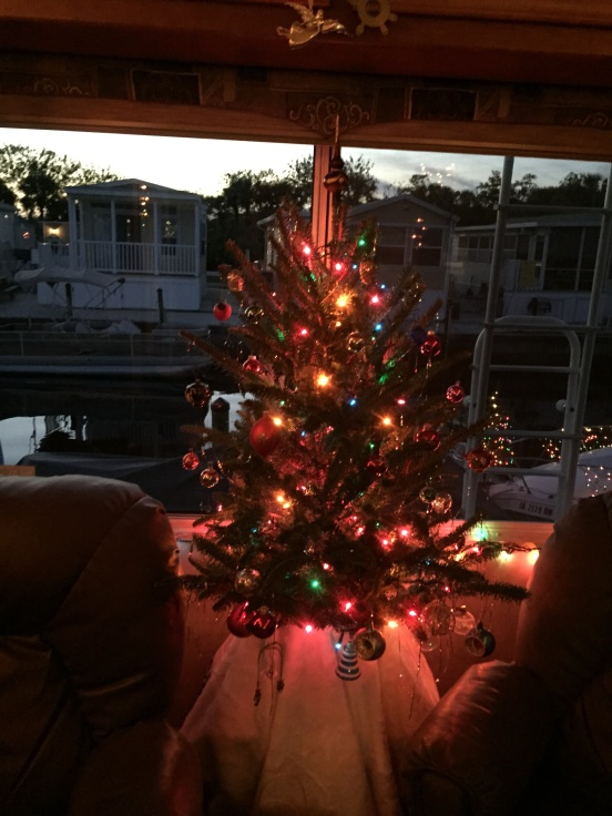 Jo and Ben's RV size Christmas tree!