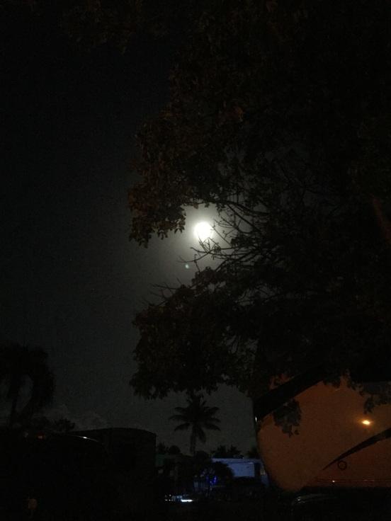 full moon for hubby's birthday!