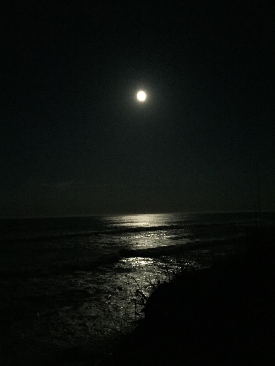 I will leave you with this one last pic of the full moon over the beach