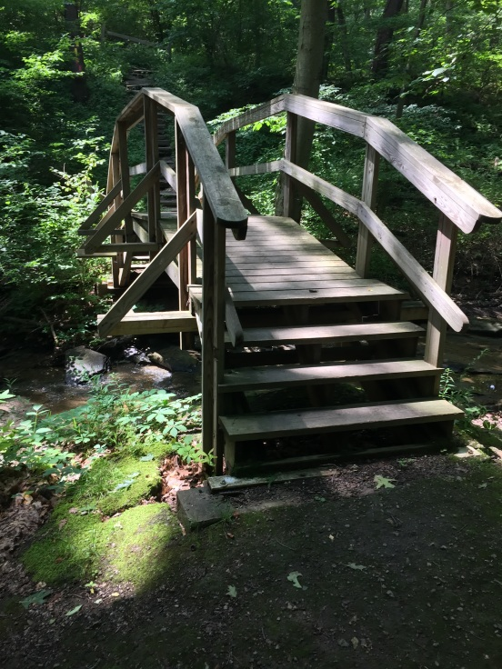 this bridge was an Eagle Scout project - very nice!
