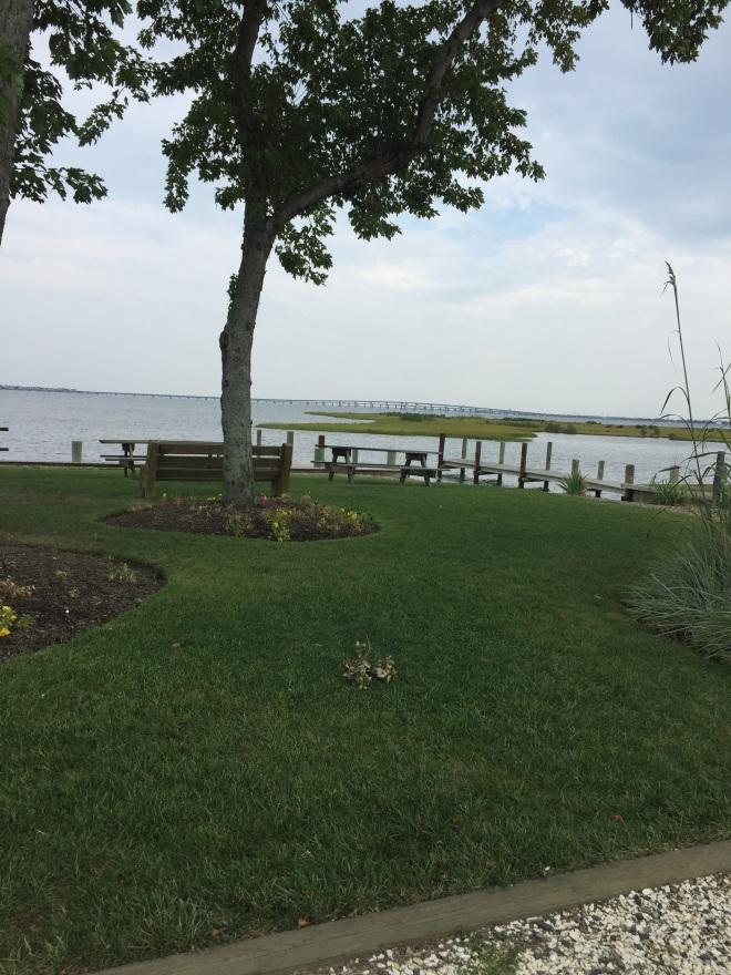 the marina in Ocean Gate is very nice