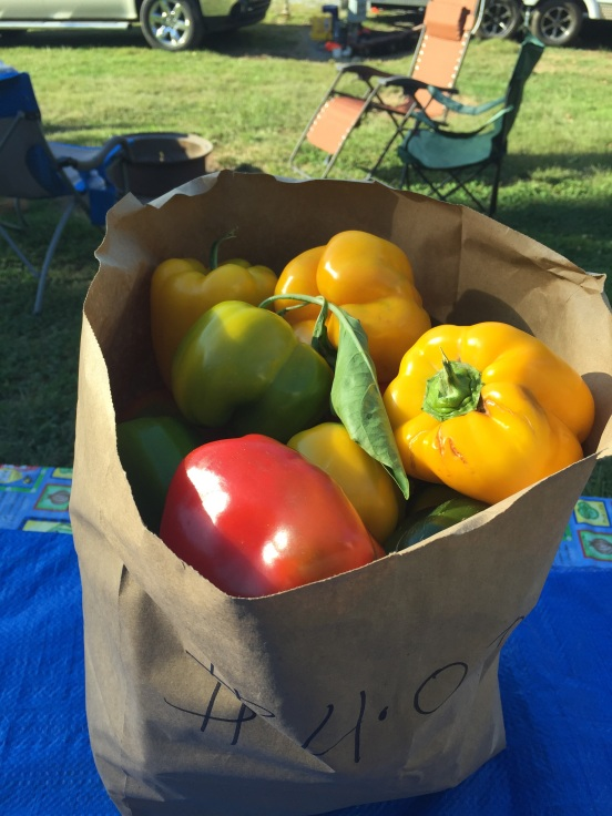 FULL bag of colored (non-green) peppers $4.00!