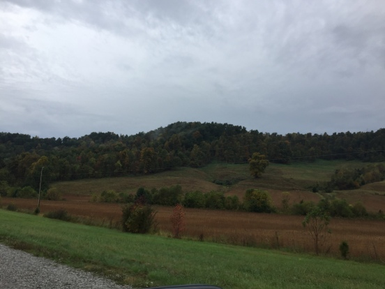 it was a grey rainy day, but you could still see the colors are starting to change