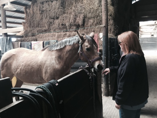 the horses name is Sugar - and she was a sweetie!