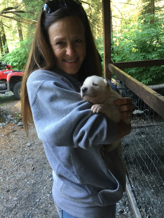 puppy love at Seaveys Ididaride, Seward